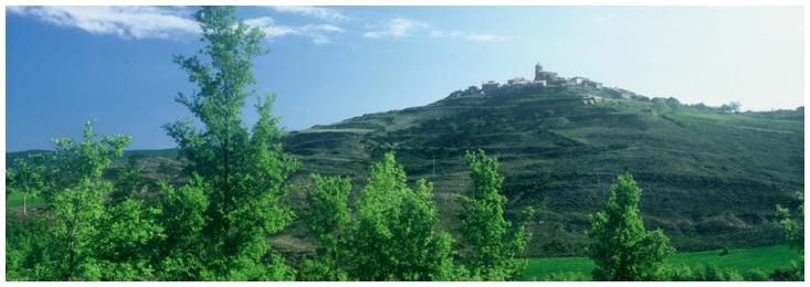 Situación Los Pintanos - Cinco Villas - Provincia de Zaragoza